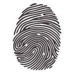 black and white fingerprint image